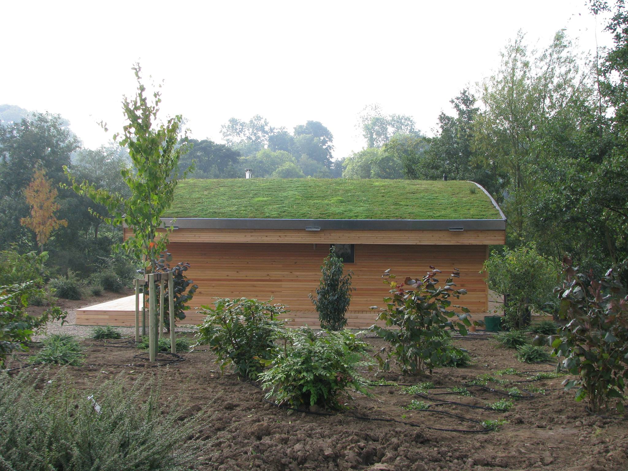 Green Roof with PROEPDM